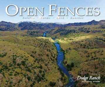 Open Fences Summer 2017