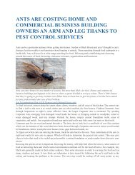 ANTS ARE COSTING HOME AND COMMERCIAL BUSINESS BUILDING OWNERS AN ARM AND LEG THANKS TO PEST CONTROL SERVICES