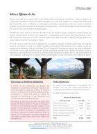 ODS - Relatório de Atividades 2016 - Page 4