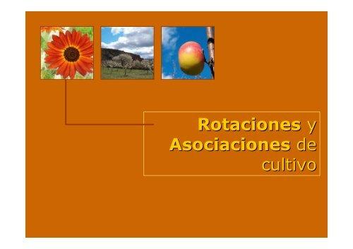 Rotaciones y asociaciones de cultivo Asociaciones de cultivos favorables