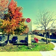 Target 1.7 miles to the south of Capitola's top cosmetic dentist Agata Konopka DDS