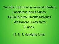 Biomas Brasileiros Paulo Ricardo e Alessandro 5º ano 2