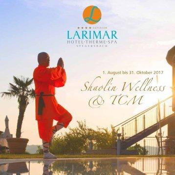 Shaolin Flyer 2017 Einzelseiten_web