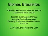 Biomas Brasileiros isabella e Ana Júlia  5º ano 2