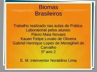 Biomas brasileiros Flávio,  Kauan e Gabriel 5º ano 02