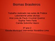 BIOMAS BRASILEIROS ANA LIVIA E SOPHIA  5º ANO 02