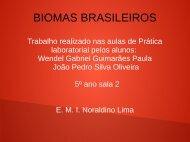Biomas Brasileiros Wendel e João Pedro 5º ano 02