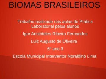 BIOMAS BRASILEIROS IGOR E LUIZ AUGUSTO  5º ANO SALA 3