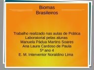 Biomas Brasileiros Ana Laura e Manuela  5º ano 04