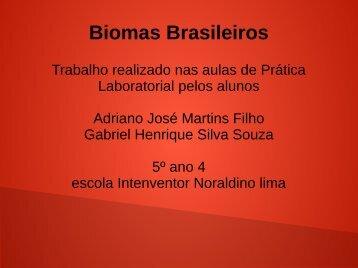 Biomas Brasileiros Adriano e Gabriel 5º ano 04