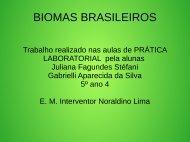 BIOMAS BRASILEIROS JULIANA E GABRIELLI  5º ANO 04