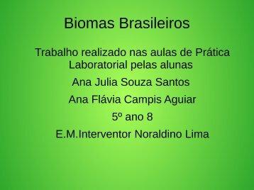 Biomas Brasileiros Ana Flavia e  Ana Julia 5º ano sala 8