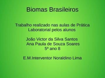 Biomas Brasileiros João Victor  e Ana Paula 5º ano 08