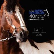 Catálogo  40 anos Santa Esmeralda
