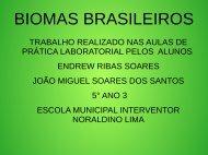 BIOMAS BRASILEIROS ENDREW E JOÃO MIGUEL  5º ANO SALA 3
