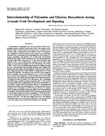 Interrelationship of Polyamine and Ethylene ... - Plant Physiology