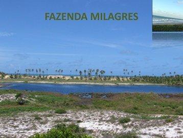 FAZENDA MILAGRES_CONDE_BA_BRASIL 01
