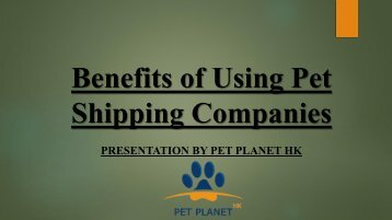 Benefits of Using Pet Shipping Companies