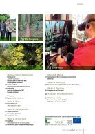 Waldverband Aktuell - Ausgabe 2017-03 - Seite 3