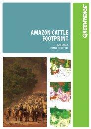 AmAzon CAttle footprint - Greenpeace