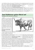 Heimat-Rundblick Nr. 121, Sommer 2017 - Page 5