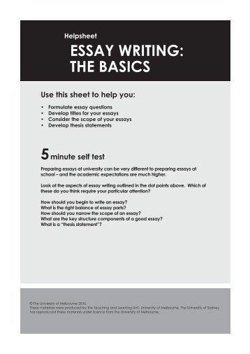 university english essay guide