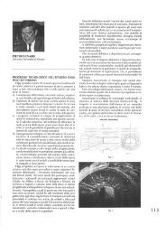 PIETRO LUNARDI Docente Università di Firenze - Rocksoil