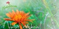 Umweltbildungsprogramm der Naturfreunde Tirol: Natur erleben!