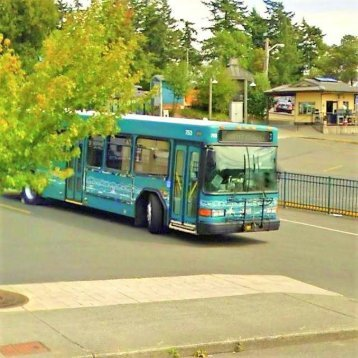 Kitsap Transit bus at Bainbridge Island Ferry Terminal near Current Dental