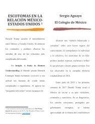 ESCOTOMAS EN LA RELACIÓN MÉXICO-EU-SAQ