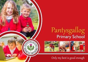 Pantysgallog Primary School Prospectus 2017