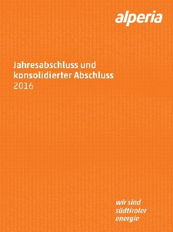 Jahresabschluss und konsolidierter Abschluss 2016