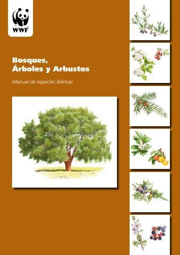 especies_arboreas2_1