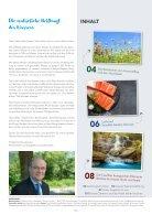 Bergpostille Nr.7 - Seite 2