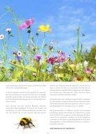 Bergpostille Nr.7 - Seite 5