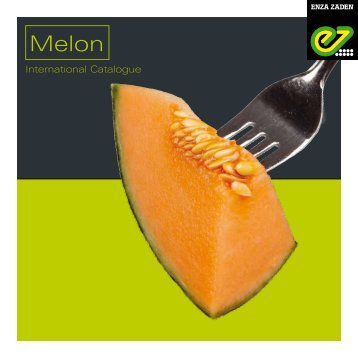 Melon 2017