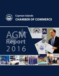 AGM Report 2017 Yumpu trial
