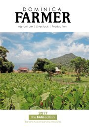 Dominica Farmer 2017 - BAM Edition