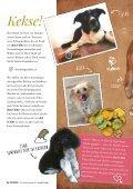 Plätzchen - Das Kundenmagazin von dog&dino - Ausgabe 1, 2017 - Seite 6