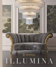 cat. Illumina Collection