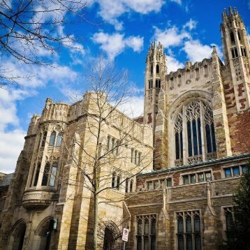 Yale University located 5.4 miles to the north of New Haven's top cosmetic dentist Shoreline Dental Care