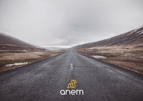 Booklet ANEM 2017 Geral