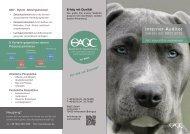 Interner Auditor DIN EN ISO 9001:2015