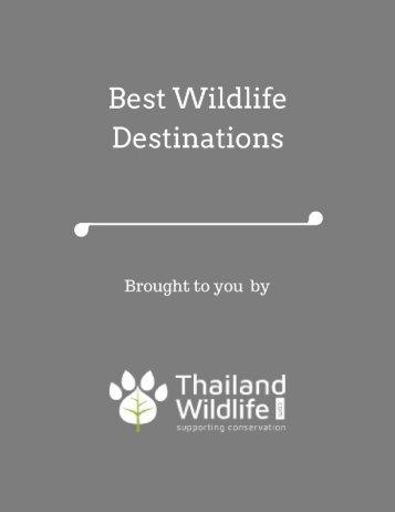 Best Wildlife Destinations
