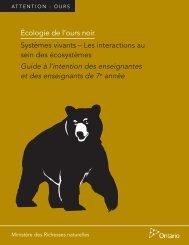 Écologie de l'ours noir - Ontario.ca