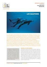 Fiche Dauphin