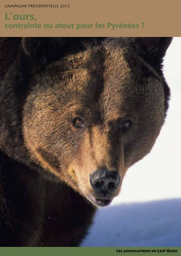 L'ours, - Sfepm