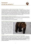 L'ours, - Sfepm - Page 6