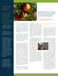 Manual de Aplicación - Page 6