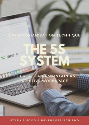 The 5S system (2)